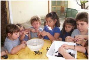 Soverato – La Scuola dell'Infanzia dell'Istituto Maria Ausiliatrice riattiva la sezione Primavera