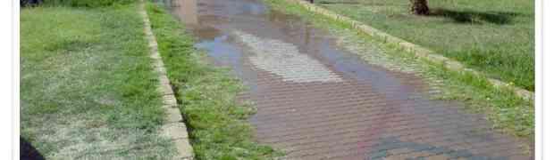 FOTO NEWS    Perdita d'acqua presso la Villa Comunale di Soverato