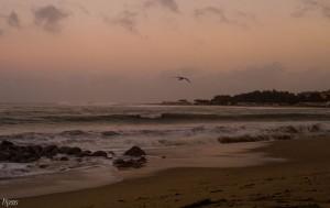 FOTO  | 01/12/2013 – Mare in Tempesta a Soverato