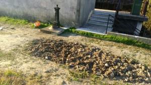 """""""Indegna noncuranza"""" al cimitero di Catanzaro Lido"""