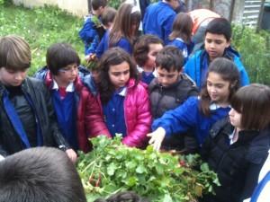 Santa Caterina Jonio – Il progetto Orto in Condotta dello Slow Food Soverato