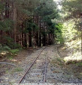 Ferrovia Silana: giornata di volontariato con Ferrovie in Calabria