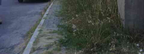 FOTO NEWS | Degrado e sporcizia sui marciapiedi in Via Aldo Moro a Davoli Marina