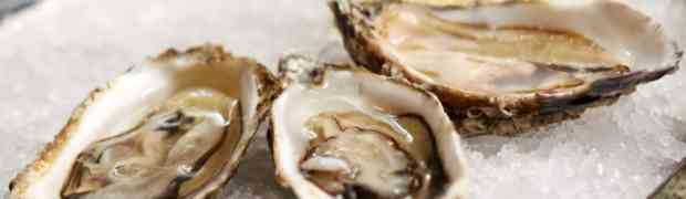 Mangia ostriche crude, donna divorata dal batterio mangia-carne