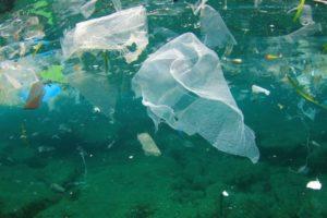Rinunciare alla plastica per salvare la bellezza del nostro mare
