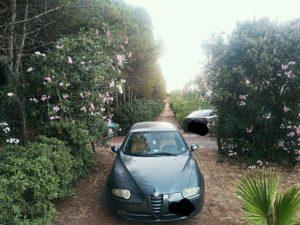 FOTO NEWS | Soverato – Parcheggi selvaggi nella pineta