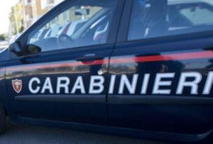 Punto da ape va in schock anafilattico, salvato dai carabinieri