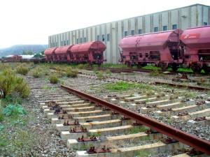 Ennesimo scempio ai danni della ferrovia Jonica